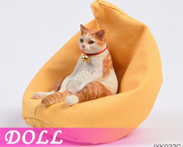 DL3645 1/6 American Shorthair C (DOLL)