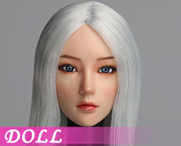 DL1494 1/6 Movable eye female head C (DOLL)