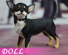 DL2207 1/6 吉娃娃犬 A (人偶)