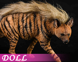 DL4160 1/6 Striped Hyena A (DOLL)
