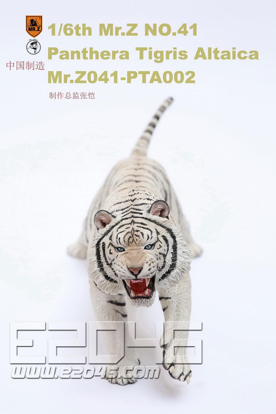 Panthera Tigris Altaica B (DOLL)