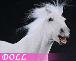 DL1607 1/6 White horse (DOLL)