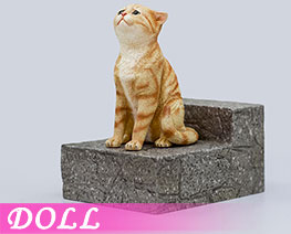 DL2280 1/6 Red Tabby Cat (DOLL)