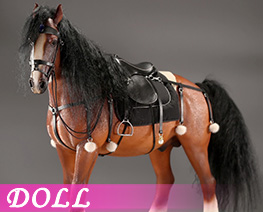 DL4637 1/6 Shire Horse 2.0 A Set (DOLL)