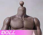 DL0379 1/6 Male Body (Dolls)
