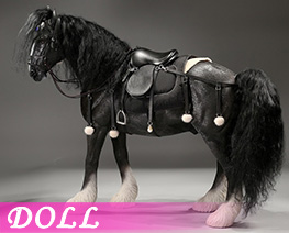 DL4643 1/6 Shire Horse 2.0 D Set (DOLL)