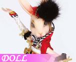 DL0010  Wizy