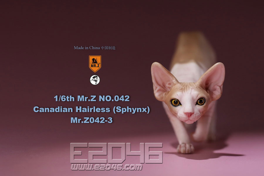 Canadian Hairless Cat C (DOLL)