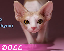 DL2665 1/6 Canadian Hairless Cat C (DOLL)