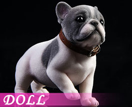 DL3300 1/6 Tufting French Bulldog B (DOLL)