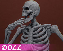 DL2951 1/12 Skeleton (DOLL)
