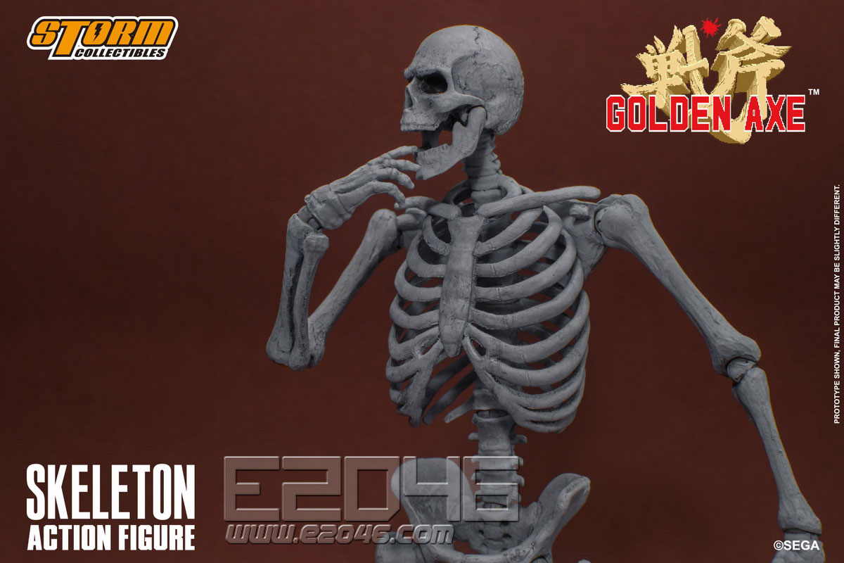 Skeleton (DOLL)