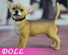 DL2208 1/6 Chihuahua Dog B (DOLL)