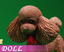 DL4004 1/6 贵宾犬 C (人偶)