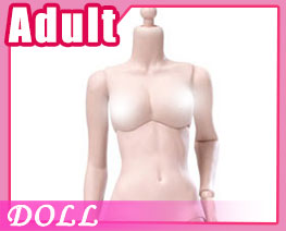 DL2353 1/6 Pale Mid Bust Encapsulation Female Body B (DOLL)