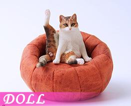 DL4683 1/6 Lazy Cat E (DOLL)