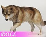 DL1012 1/6 Tan Wolf (Doll)