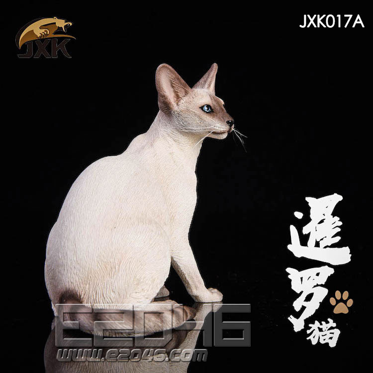 Siamese Cat Squatting A (DOLL)