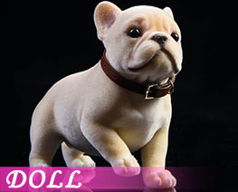 DL3302 1/6 Tufting French Bulldog D (DOLL)