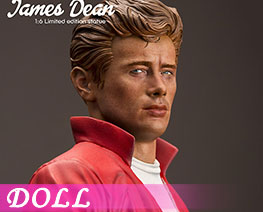 DL3101 1/6 James Dean (DOLL)